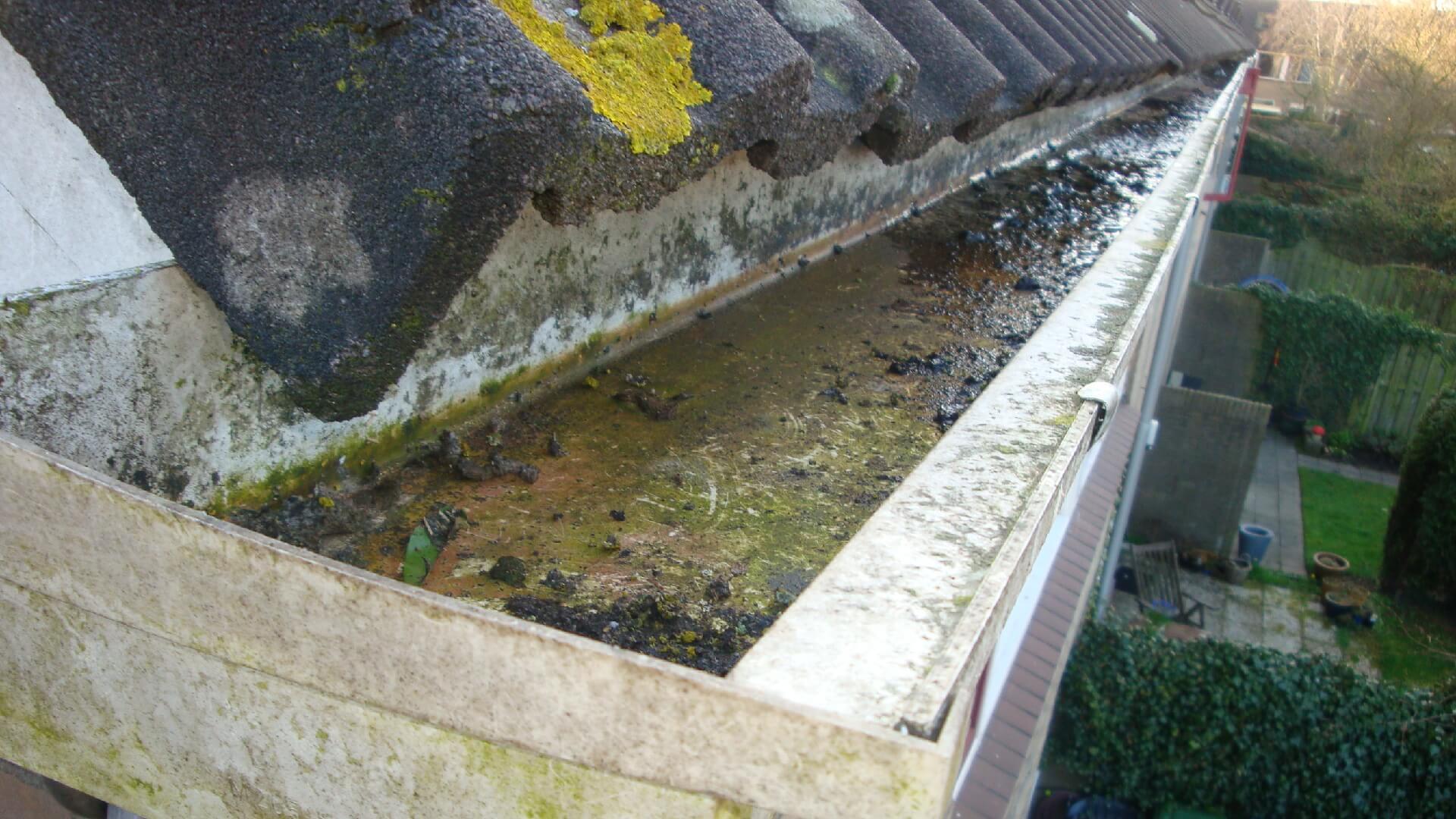 Dakgootlekkage? Onderhoudscontract daklekkage Amersfoort voorkomt schade als gevolg van verstopte dakgoten.